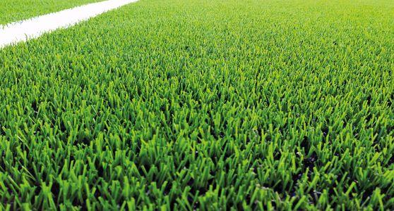 Drop gräs